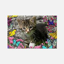Emma Tabby Kitten in Butterflies Rectangle Magnet