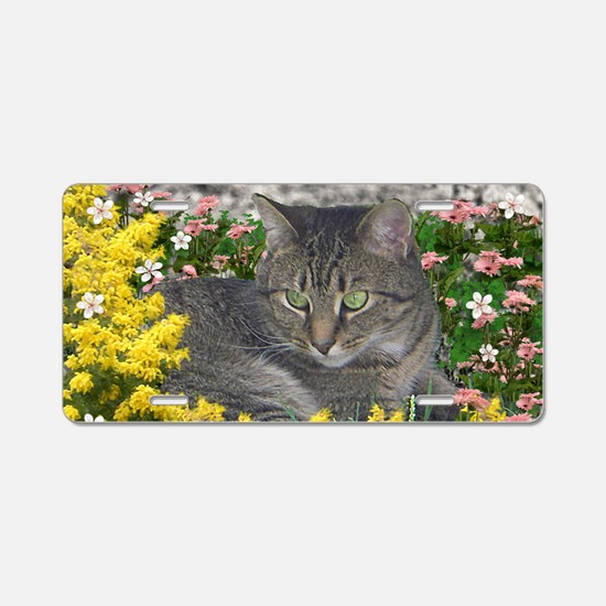 Mimosa the Tiger Cat in Mim Aluminum License Plate