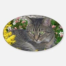 Mimosa the Tiger Cat in Mimosa Flow Decal