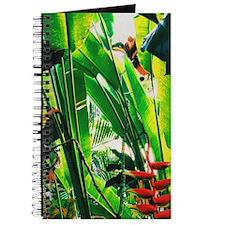 Tropical 2 Journal