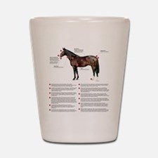 Vital Signs of a Healthy Horse Shot Glass