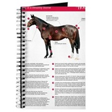 Vital Signs of a Healthy Horse Journal