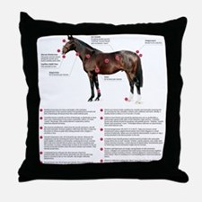 Vital Signs of a Healthy Horse Throw Pillow