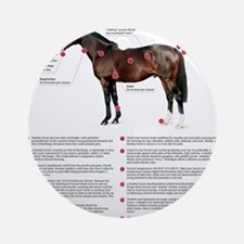 Vital Signs of a Healthy Horse Round Ornament
