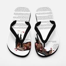 Vital Signs of a Healthy Horse Flip Flops