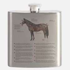 Vital Signs of a Healthy Horse Flask