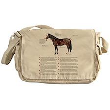 Vital Signs of a Healthy Horse Messenger Bag
