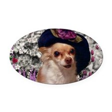 Chi Chi the Chihuahua in Flowers Oval Car Magnet
