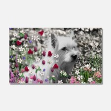 Violet the White Westie in Flow Car Magnet 20 x 12