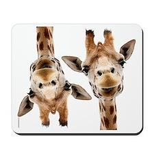 Hangover Movie Part 3 Giraffe Mousepad