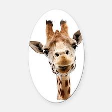 Hangover Movie Part 3 Giraffe Oval Car Magnet