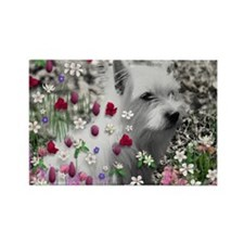 Violet the White Westie in Flower Rectangle Magnet