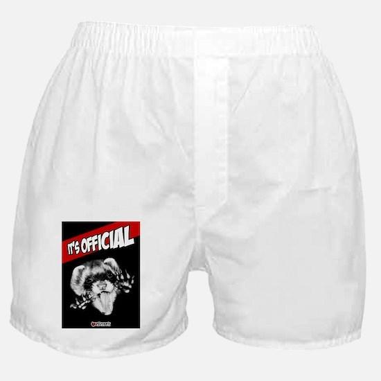 LoverFerrets Bday Card Boxer Shorts