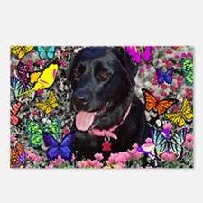 Abby the Black Lab in But Postcards (Package of 8)
