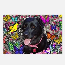 Abby the Black Labrador i Postcards (Package of 8)
