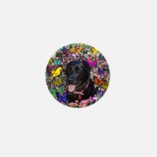 Abby the Black Lab in Butterflies Mini Button