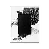 Bald eagle Picture Frames
