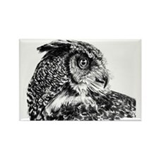 Owl 2 Rectangle Magnet