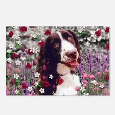 Lady the Brittany Spaniel Postcards (Package of 8)