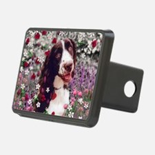Lady the Brittany Spaniel  Hitch Cover
