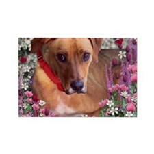 Trista the Rescue Dog in Flowers Rectangle Magnet