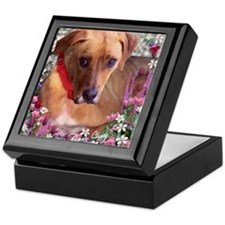 Trista the Rescue Dog in Flowers Keepsake Box