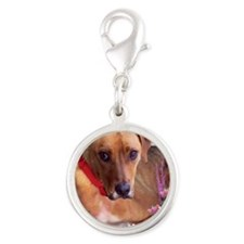Trista the Rescue Dog in Flowe Silver Round Charm
