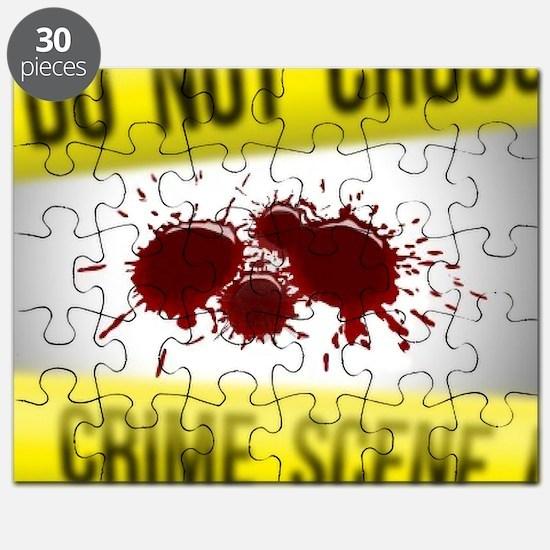 Crime Scene Spatter Puzzle