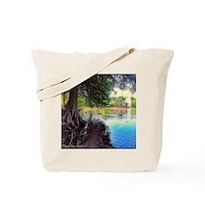 2013-05-25 01 Tote Bag