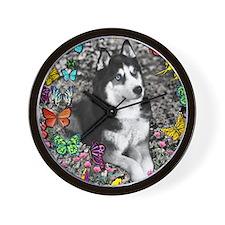 Irie the Siberian Husky in Butterflies Wall Clock