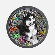 Irie the Siberian Husky in Butterflies Wall Clock