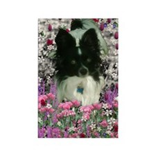 Matisse the Papillon in Flowers Rectangle Magnet