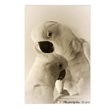 Cockatoo Pals Postcards (Package of 8)