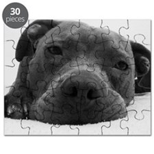 Cute Black And White Pit Bull Face Puzzle