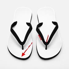 Forex-Stock-Trader-06-B Flip Flops