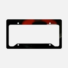 HS Record XXL License Plate Holder