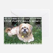 Dusty - Puppy Mill Survivor Greeting Card