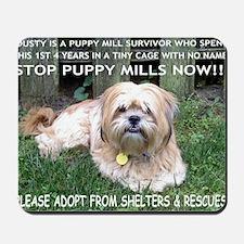 Dusty - Puppy Mill Survivor Mousepad