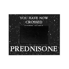 The Prednisone T-shirt Picture Frame