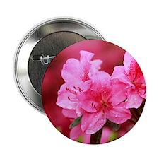 "Pink azaleas 2.25"" Button"
