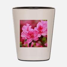 Pink azaleas Shot Glass