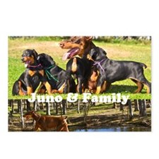Juno and her Doberman Pup Postcards (Package of 8)