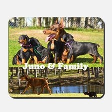 Juno and her Doberman Puppies Mousepad
