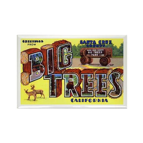Big Trees Park California Rectangle Magnet