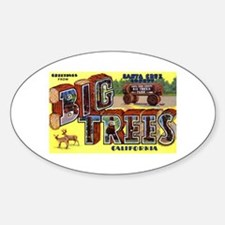 Big Trees Park California Oval Decal