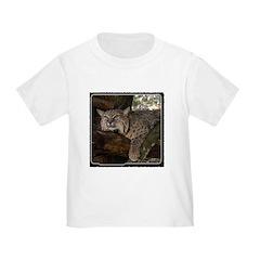 Bobcat 1 T
