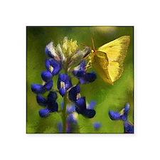 "butterflyonbluebonnetbright Square Sticker 3"" x 3"""