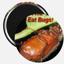 Save the World!  Eat Bugs! Magnet