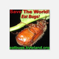 "Save the World!  Eat Bugs! Square Sticker 3"" x 3"""