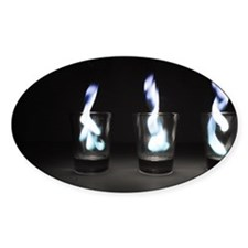 Flaming Shots Poster (Large) Decal